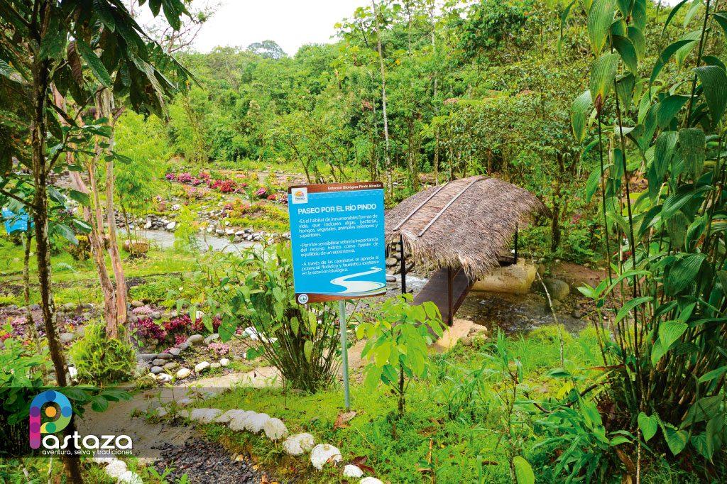 Estación Biológica Pindo Mirador